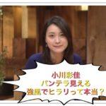 小川彩佳のパンテラ見える画像は強風でヒラリ【報道ステーション】
