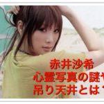 赤井沙希の心霊写真や吊り天井をやられた動画は見えてる【画像】